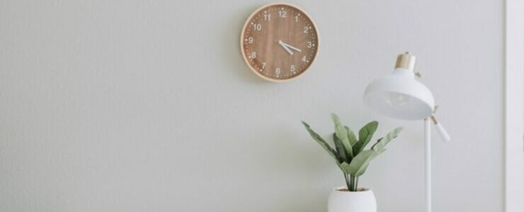 table, plant and clock