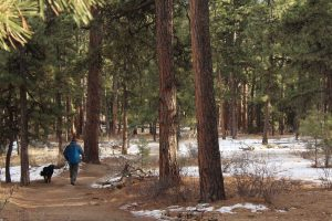 spend time in Parker after the move by visting local parks