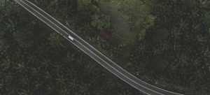bird view of a road