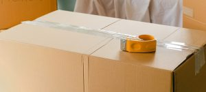 Carton boxes and other packing materials